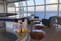 Dapper-Mouse-Travels-Disney-Dream-Bar-Alberca-Adultos