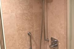 Disney-Dream-Concierge-Suite-Baño-Pequeño-Regadera